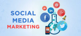 How important is social media marketing for an online business?